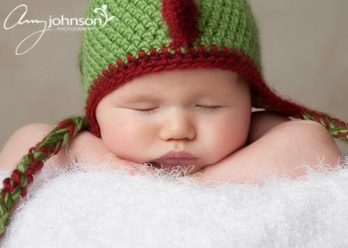 Evergreen Baby Photographe