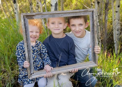 Conifer family portraits