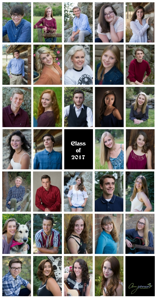 senior_collage_2016